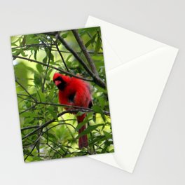 Red Says I See You Stationery Cards