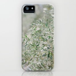 Holy Land Olive Branch - Fine Art Film Travel Photography iPhone Case