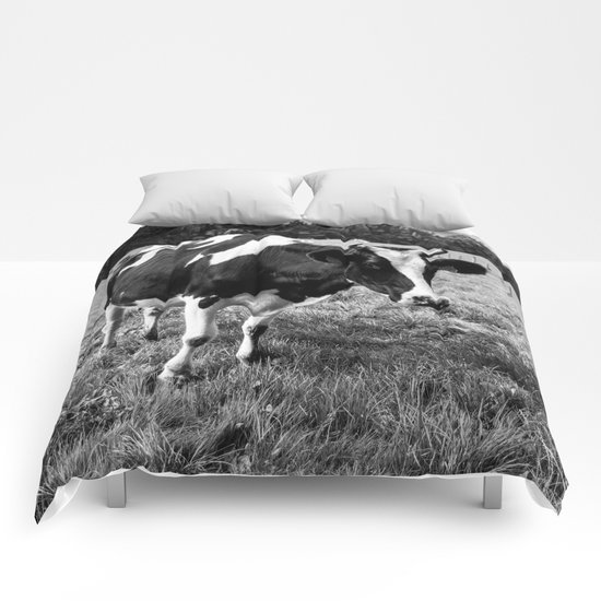 Black and White Cow Comforters