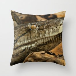 Hissing Sid Throw Pillow