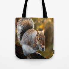 Squirrel nutkin Tote Bag