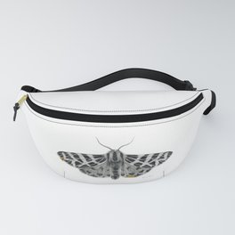 Kintsugi - A Graphite Drawing of a Moth by Brooke Figer Fanny Pack