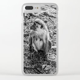 Toque Macaque Monkey Clear iPhone Case