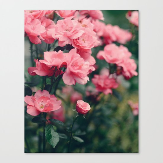 Grey Garden Canvas Print