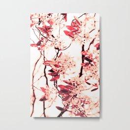 Spring Blossum Metal Print