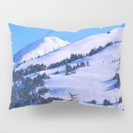 Back-Country Skiing  - IV Pillow Sham