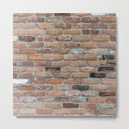 wall bricks Metal Print
