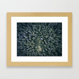Camping in the Woods Framed Art Print