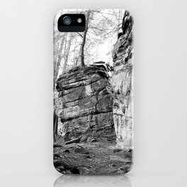 Perched Atop iPhone Case