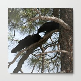 Crows in Love Metal Print