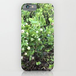 Green forest berries iPhone Case