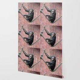 Chimpanzee_001_by_JAMFoto Wallpaper