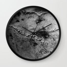 Sutures On The Cow Skull Wall Clock