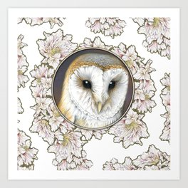 Barn owl small Art Print