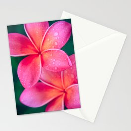 Aloha Hawaii Kalama O Nei Pink Tropical Plumeria Stationery Cards