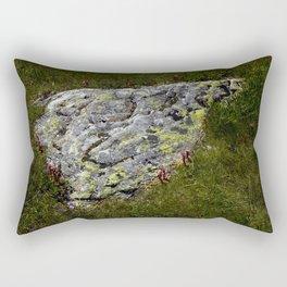 STONES LICHEN NUGGET Rectangular Pillow