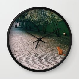 A Cat in Old San Juan Wall Clock