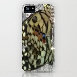 Mating Butterflies iPhone Case
