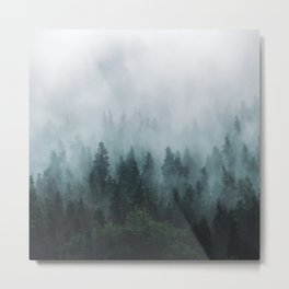 Take Me Somewhere Misty Metal Print