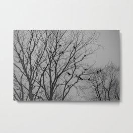 Roosting birds on silhouette tree Metal Print