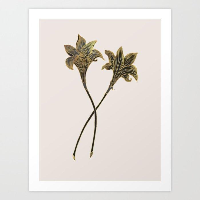 Indian Lily Daffodil Kunstdrucke