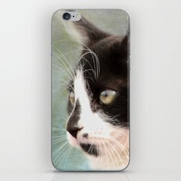 The Ships Cat iPhone Skin