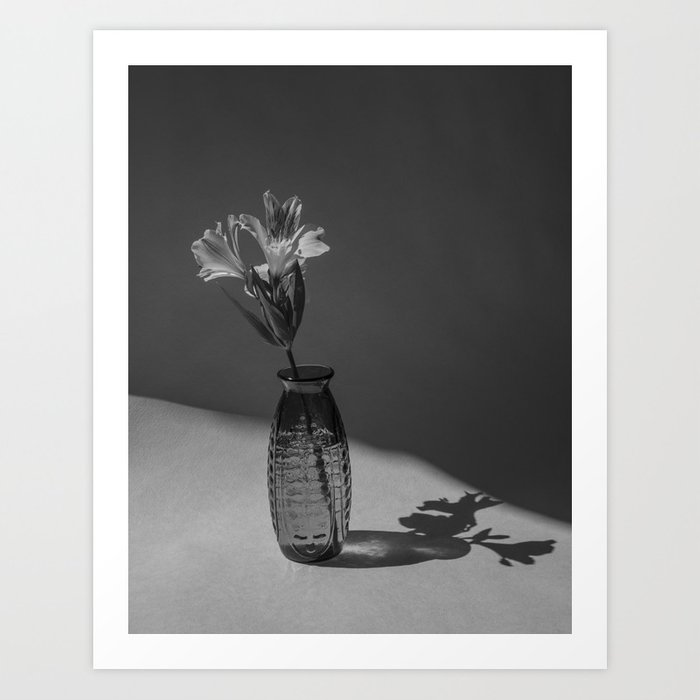 Shadow and flower Art Print