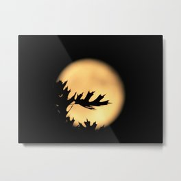 Outstretched Hands Metal Print