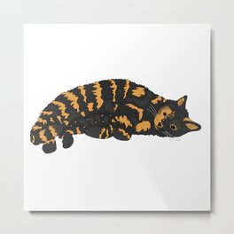 Tortoise Shell Cat Metal Print