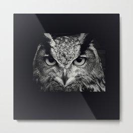 owl chouette 2 Metal Print