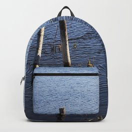 Duck Pond Backpack
