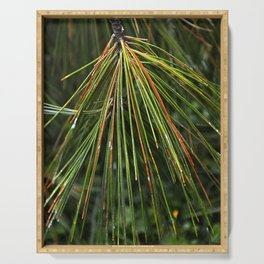 Multicolor Pine Needles Serving Tray