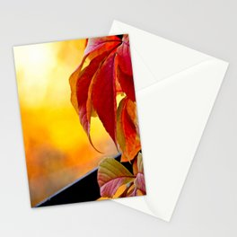 Autumn red vine leaves and yellow background Stationery Cards