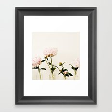 Four Friends Peony Flowers Framed Art Print
