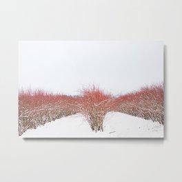 Field in the Snow Metal Print
