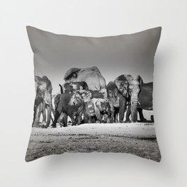 Elephant Herd Circling IV Throw Pillow