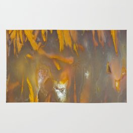 Mexican Flame Agate Rug