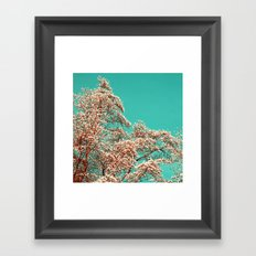 magnolia tree XV Framed Art Print