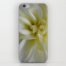 Nature's Dance in White iPhone & iPod Skin