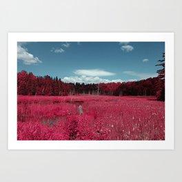 Infrared  by Jean-François Dupuis Art Print