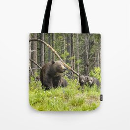 Charting the Course - Grizzly 399 with Her Four Cubs Tote Bag