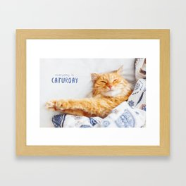 Everyday is caturday Framed Art Print