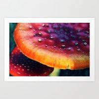 mushrooms Art Prints featuring mushrooms by JoanaRosaC