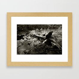 Somewhere in the Annapolis Valley, Nova Scotia Framed Art Print