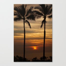 Watching The Setting Sun Canvas Print