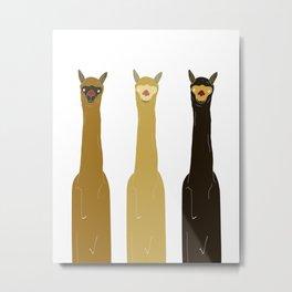 Triple LLAMAS ALPACAS CAMELS Metal Print