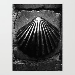 shot on iphone .. bronze shell Poster