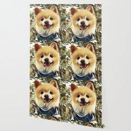 Pomeranian the Teddy Bear Puppy Wallpaper