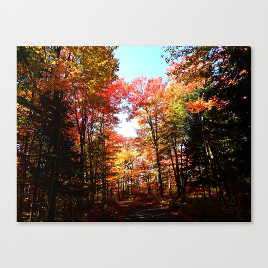 Eastern Quebec in Autumn Canvas Print