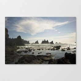 In with the Tide - Shi Shi Beach, WA Canvas Print